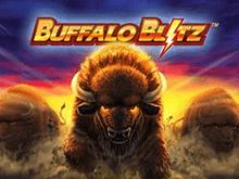 Buffalo Blitz от Playtech – выигрышный слот