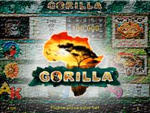 Gorilla автомат для игры на деньги онлайн производства Novomatic