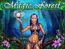 В казино Вулкан Вегас Магический Лес