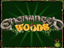 Шансы поймать удачу на слоте Enchanted Woods довольно велики