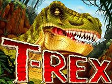 Правила и бонусы игрового аппарата T-Rex