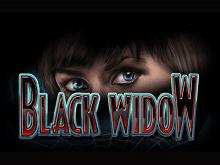 Black Widow — виртуальный автомат для азартной игры