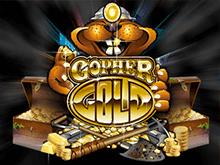 Играйте в супер-слот Gopher Gold в Казино Чемпион