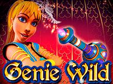 Начинайте играть в виртуальный автомат Genie Wild
